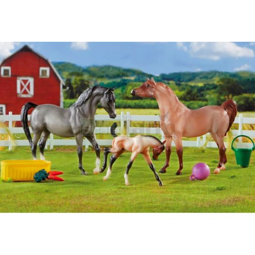 A Champion is Born - 3 Horse and Accessories Set (Breyer 61087)