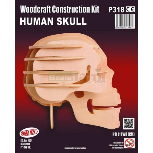 Human Skull Woodcraft Construction Kit (Quay P318)